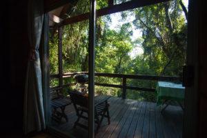 Kurisa Moya Forest Cabin